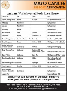 Workshops Autumn 2013 (2)